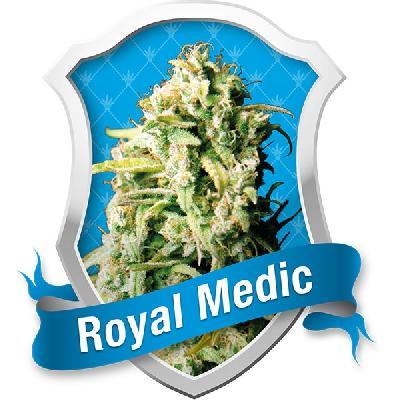 Royal Medic 3 Semillas