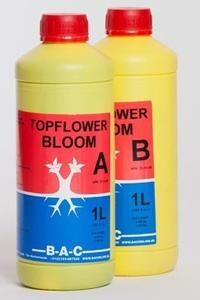 Top Flower A + B Bloom