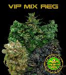Vip Regular Mix 10 Semillas