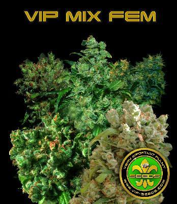 Vip Mix Fem 3 Semillas