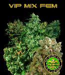 Vip Mix Fem 10 Semillas
