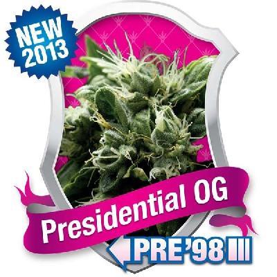 Presidential Og 10 Semillas