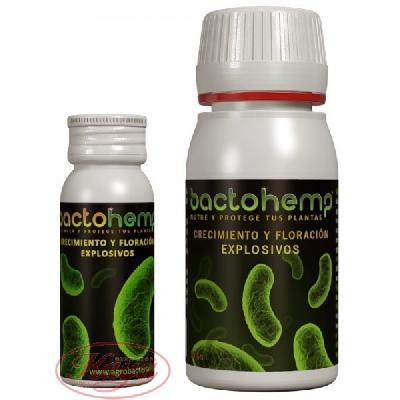 Bactohemp 50 Gramos