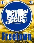 Freetown 3 Semillas