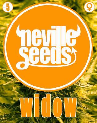 Widow Neville 5 Semillas