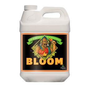 Bloom Ph Perfect 10 Litros