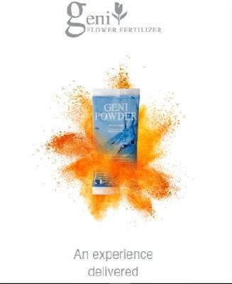 Geni Powder Caja 5 Sobres 65gr/sobre