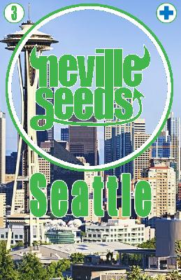 Semillas 22,6% Cbd Seattle 3 Semillas