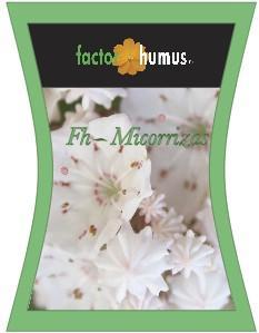 Fh-Micorrizas 100 gr