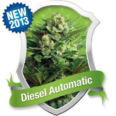 Diesel Automatic 10 Semillas