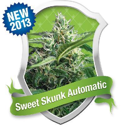 Sweet Skunk Automatic 10 Semillas